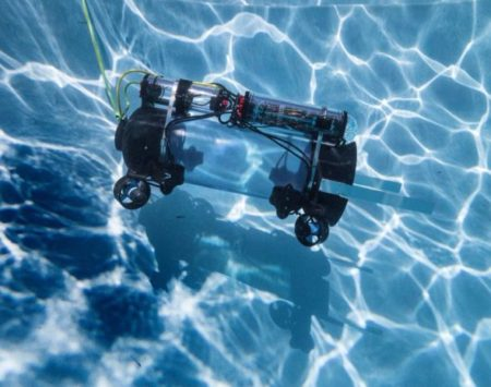Lionfish to be Vacuumed up by Underwater Robots
