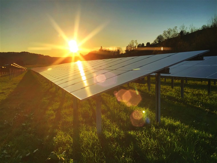 These Bacteria's Boosts Solar Panels on Cloudy Days